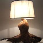 lampada su radice spiaggiata