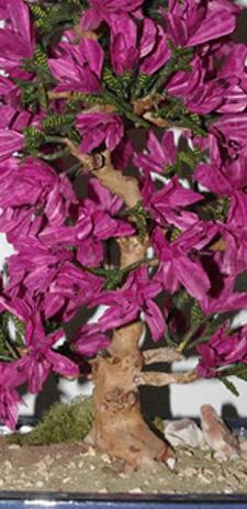azalea bonsai fiorita con perline