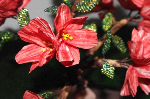bonsai di melograno con carta pirkka