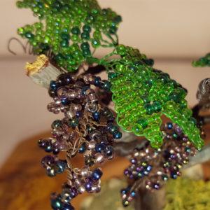 tralcio di vite di perline in vaso
