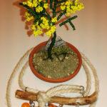 Mimosa e collana (c)