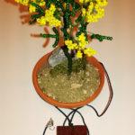 Mimosa e collana (d)