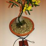 Mimosa e collana (g)