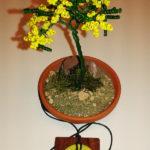 Mimosa e collana (h)